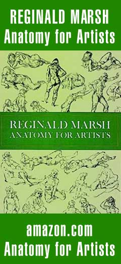 Anatomy for Artists - Reg Marsh
