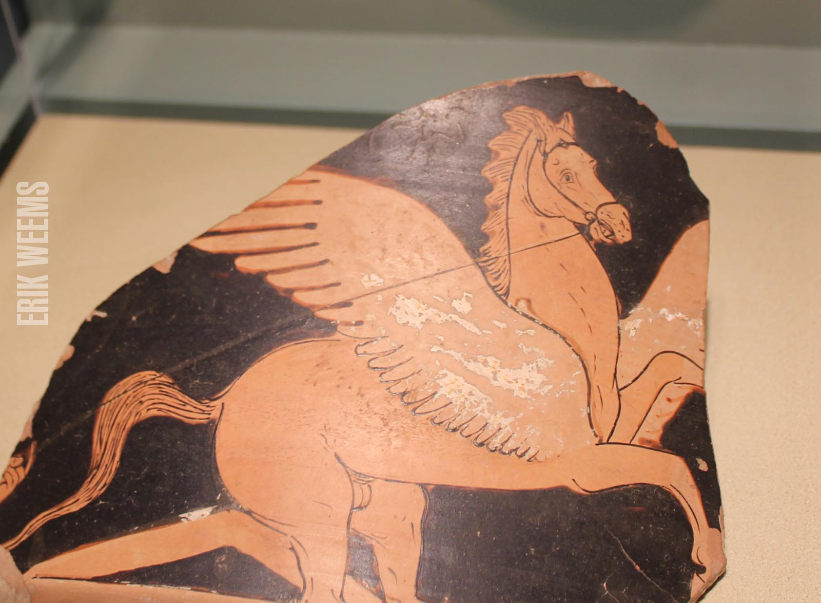 Enlarged - Shard Greek Winged Horse Art